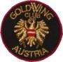 GWCA - Logo drm 60